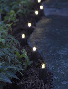 LED Solar Border Lights - Gardener's Supply Company