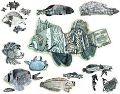 Manuales: !Casi trescientos peces!