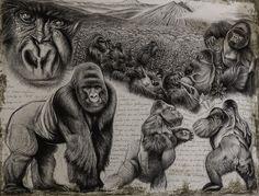 Virunga gorille des montagnes de Marcello Pettineo