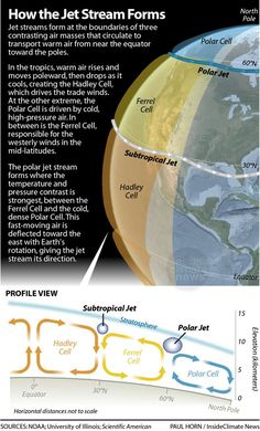 Polar Vortex: How the Jet Stream and Climate Change Bring on Cold Snap – Healing Inspirations Weird Science, Science Facts, Science Activities, Science Lessons, Science Projects, Science Experiments, Weather Science, Weather And Climate, Climate Change