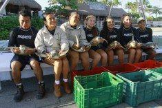 PLAYA DEL CARMEN, QUINTANA ROO; MAY0, 2016.-  Cinco tortugas marinas que habían sido afectadas por la inanición y la deshidratación severa retornaron al mar Caribe tras una breve pero emotiva liberación realizada por especialistas del parque Xcaret.