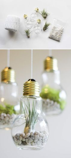 How to make DIY lightbuilb terrariums. Click on image to see more DIY crafts and ideas for your home.