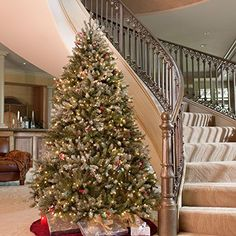 The best pre lit Christmas trees have a combination of a beautiful tree adorned with sparkling Christmas lights.  Best Christmas Tree Deals    Snowy Dunhill Full Pre-lit Christmas Tree
