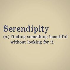 """serendipity - """"Vital lives are about action. You can't feel warmth unless you create it, can't feel delight until you play, can't know serendipity unless you risk Unusual Words, Weird Words, Rare Words, Big Words, Unique Words, Cool Words, Interesting Words, Fun Words To Say, English Vocabulary Words"""