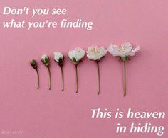 Heaven in Hiding by Halsey on Hopeless Fountain Kingdom °♚ @GοΗεlρΑrι ♚°