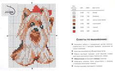 схема собаки: 26 тыс изображений найдено в Яндекс.Картинках