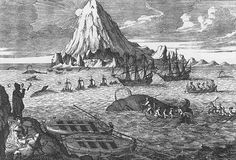 Eighteenth-century engraving showing Dutch whalers hunting bowhead whales in the Arctic.