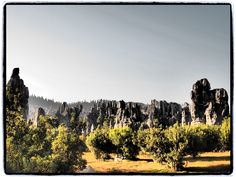 travels in china | kunming + stone forest @voyageindesign