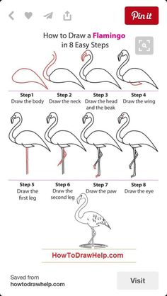 Draw a flamingo