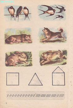 Abecedar 1959 – Un zâmbet de copil… Vintage School, Kindergarten Activities, Kids Education, Nostalgia, Moose Art, Painting, Animals, Book Illustrations, Books