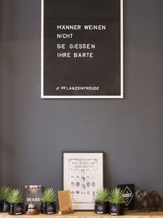 Vitamin P Men's Shop in Berlin – Pflanzenfreude.de