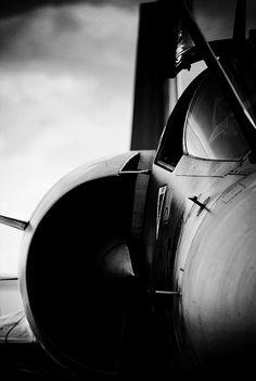 ❦ l'envol by FREDBOUAINE ☮ on Flickr.