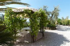 Vacation Villa Rental in Lucca, Tuscany | Italy Vacation Villas