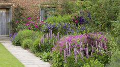The purple border at Sissinghurst Castle © Jonathan Buckley