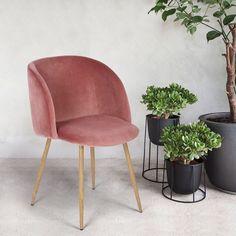 Rose Mid-Century Velvet Accent Dining ArmChair Sofa Lounge Chair Solid Steel leg #Homycasa #ArtsCraftsMissionStyle