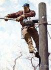 """Wichita Lineman"""" & """"The Telephone Lineman"""""""