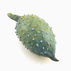 Ceramic Seed Pod  Wild Cucumber Rattle  Ceramic by WoobieLove