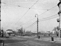 1960, Budaörsi út, 12. kerület, 1. kerület, 11. kerület Utility Pole, Tarot, Tarot Decks, Tarot Cards