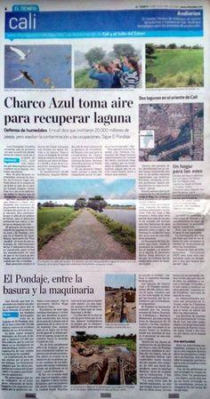 """Charco Azul toma aire para recuperar laguna [Impreso]  VÍA ELTIEMPO"