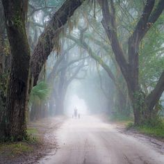 Here Are 19 MORE Jaw-Dropping Places In South Carolina That Will Blow You Away