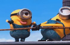 This is how i irritate my frnds 😜😜😜 Minion Gif, Happy Minions, Cute Minions, Minion Jokes, Minions Despicable Me, Minions Quotes, Animiertes Gif, Funny Minion Pictures, Cute Funny Quotes