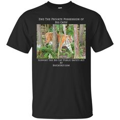 Just added this new Big Cat Act Selec... Check it out! http://catrescue.myshopify.com/products/tributetrio-2?utm_campaign=social_autopilot&utm_source=pin&utm_medium=pin