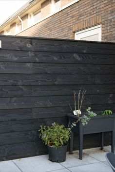 Discover recipes, home ideas, style inspiration and other ideas to try. Privacy Fence Designs, Black Fence, Black Garden, Front Fence, Outdoor Spaces, Outdoor Decor, Exterior Design, Outdoor Gardens, Garden Design