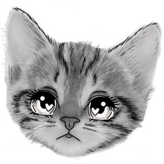 Kittens Cutest, Cats And Kittens, Kitten Eyes, Cute Animal Drawings, Cute Little Animals, White Cats, Animal Wallpaper, Funny Babies, I Love Cats