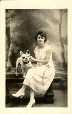 Vintage French Bulldog photo, 1920's.