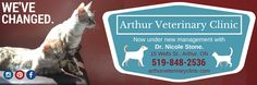 Spot it in your local flyer! Vet Clinics, We Run, Wellness, Community, Change, Graphic Design, News, Business, Visual Communication
