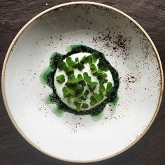 Oxalis and yogurt palate cleanser by @chefnk #TheArtOfPlating
