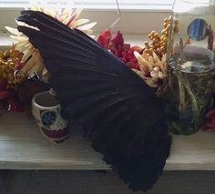 Real Crow Wing
