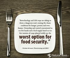 """Biotechnology and GM crops are taking us down a dangerous road, creating the classic conditions for hunger, poverty and even famine. Ownership and control concentrated in too few hands and a food supply based on too few varieties of crops planted widely are the worst option for food security."" - Christian Aid Report http://www.naturalnews.com/Quote-Biotechnology-GM-Crops-Worst-Option-Christian-Aid-Report.html"