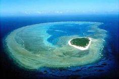 lady musgrave island | Lady Musgrave Island Reviews - Lady Musgrave Island, Queensland ...