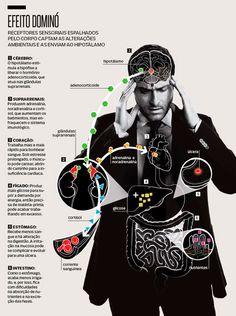 Como problemas emocionais se transformam em doenças?O que são as 'Luas de Sangue'?GoFor: recrute drones através dePapiro que menciona 'esposa de