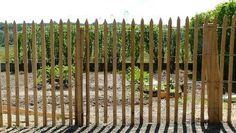 Cloture ganivelle (girondine) en bois châtaignier scié - Materiaux nauturels.fr