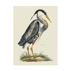 Blue Heron, Artist Canvas, Canvas Art Prints, Art Reproductions, Fine Art, Walmart, Animals, Painting, Stretching