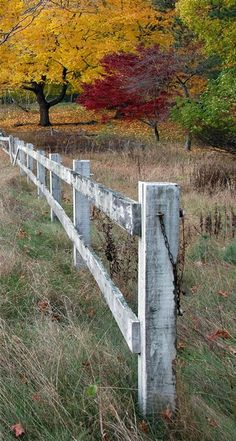 Weathered White Fence
