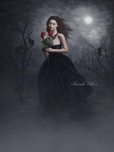 https://burakulker.deviantart.com/art/A-Rose-For-The-Dead-658345109