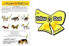 Resultado de imagen de perros con lazo amarillo