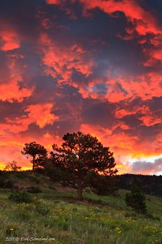 Summer sunrise dramatic sky, Upper Beaver Meadows, Rocky Mountain National Park