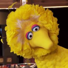 Pin for Later: Michelle Obama and Big Bird Think Carrots Are Better Than Ariana Grande