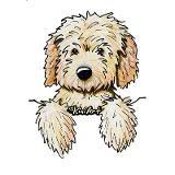 Pocket Doodle Pup Mug for $18.50
