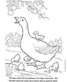 Free Farm Animal Coloring Sheets 027