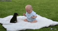 Baby plays with puppy
