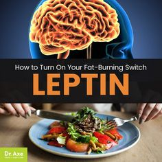 """Nutrition & santé : How to Turn On Your Fat-Burning Switch, Leptin (Your """"Starvation Hormone"""") . Nutrition & santé : Illustration Description How to Turn On Your Fat-Burning Switch, Leptin (Your """"Starvation Hormone"""") by Dr. Leptin Foods, Leptin Diet, Metabolic Diet, Diet Foods, Ketogenic Diet, How To Increase Leptin, Leptin And Ghrelin, Leptin Levels, Lose Stomach Fat Fast"""