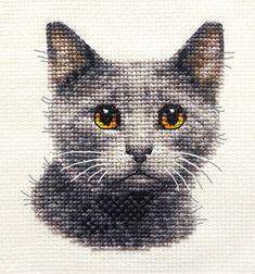 GREY CAT, KITTEN ~ Original Full counted cross stitch kit + All materials   | eBay