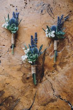How To Give Your Chic Wedding A Natural Makeover How To Give Your Chic Wedding A Natural Makeover If You Love Your Natural Surroundings Then You Ll Love This Next Wedding Succulent And Thistle Wedding Boutonniere Succulent Boutonniere, Succulent Bouquet, Groom Boutonniere, Boutonnieres, Rustic Wedding Boutonniere, Chic Wedding, Floral Wedding, Wedding Colors, Dream Wedding