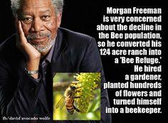 Morgan Freeman, leading the way ...the right way....