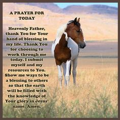 Rustic ~ Redneck - redwingjohnny: Twilight Pinto by Kellith Prayer For Today, Daily Prayer, Most Beautiful Animals, Beautiful Horses, Pretty Horses, Beautiful Babies, Psalm 143, Let Us Pray, Show Me The Way